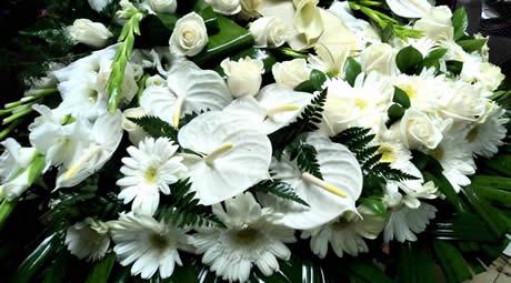 Serviços de Florista